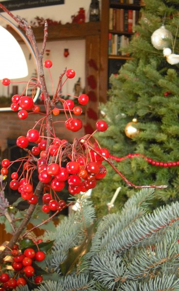 Berries and pine -- celebrating Christmas in 19th century style.